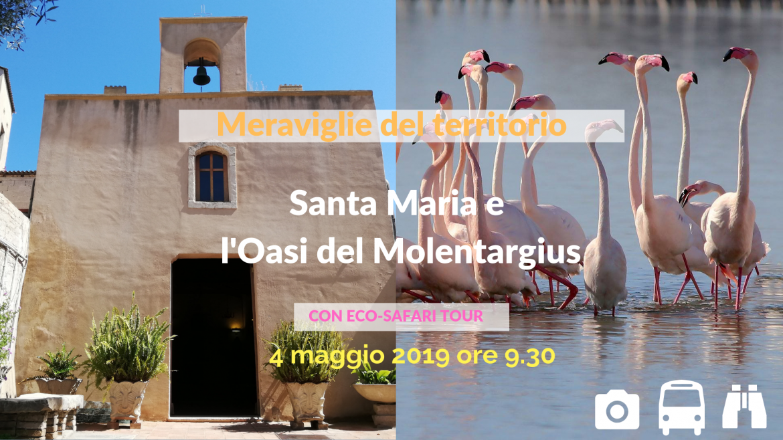 Le Meraviglie del territorio - Santa Maria e l'Oasi del Molentar